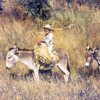 Boy on Burro - Pepito by Clark Hulings