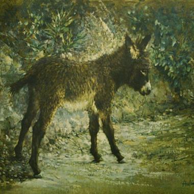 Elizabeth's Burro, by Clark Hulings