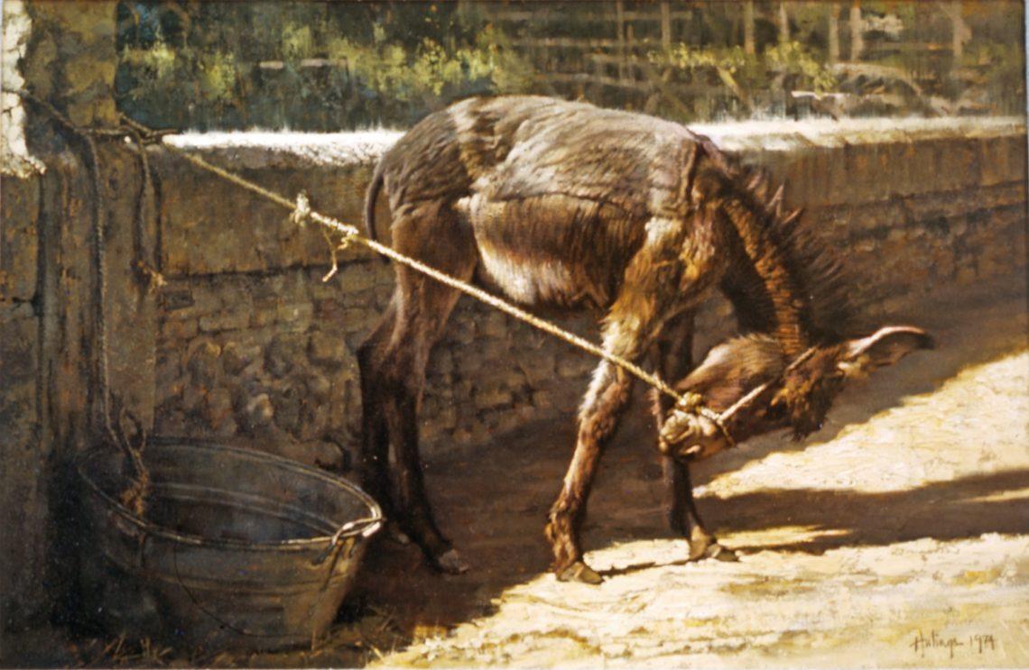 clark-hulings-burro