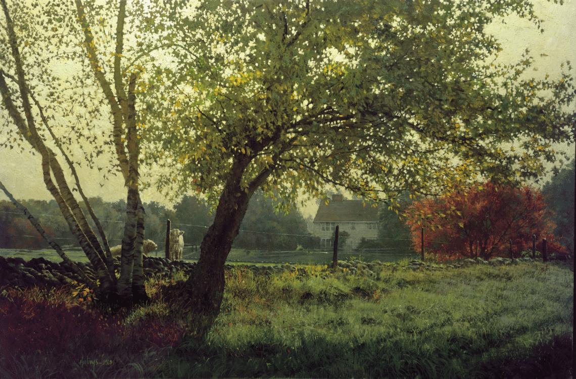 Washington Meadow (1)